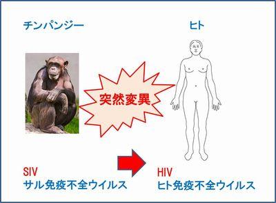 エイズの起源